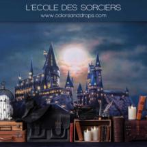 lecole-des-sorciers-sol-wizard